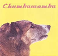 What You See Is What You Get by Chumbawamba