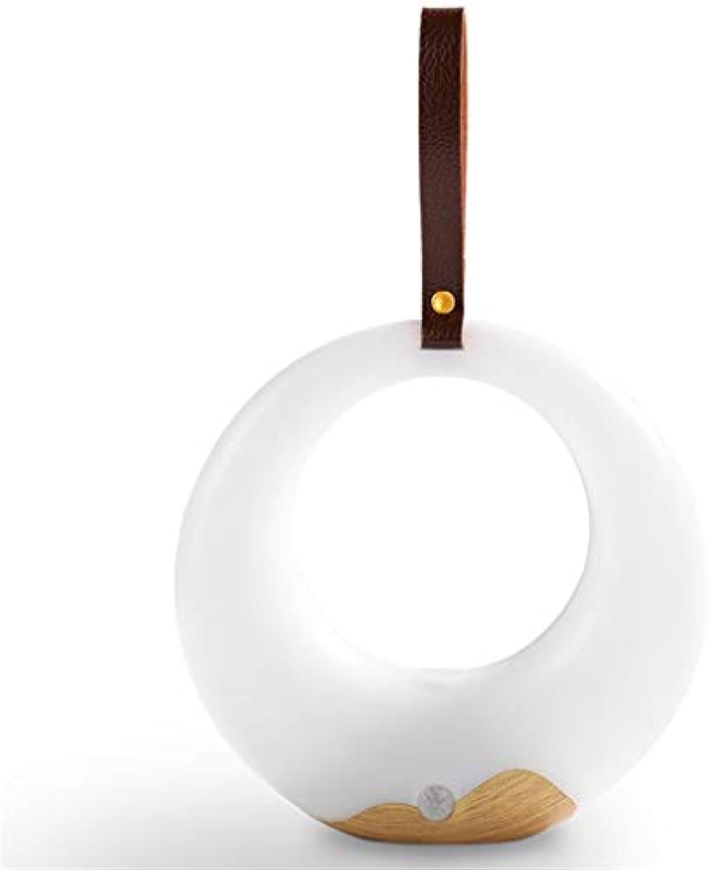 AOMEEG Bewegungssensor Nachtlicht, USB-Ladeschreibtischlampe, DREI-Farben-Temperaturregelung, kann aufgehngt Werden, geeignet für Schlafzimmer Wohnzimmer