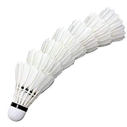 STN Badminton Shuttlecock Pack of 10 Feather Shuttle Cock