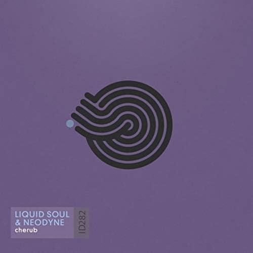 Liquid Soul & Neodyne