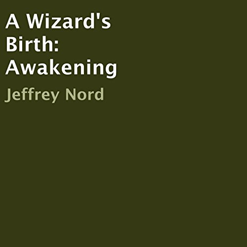 A Wizard's Birth: Awakening cover art