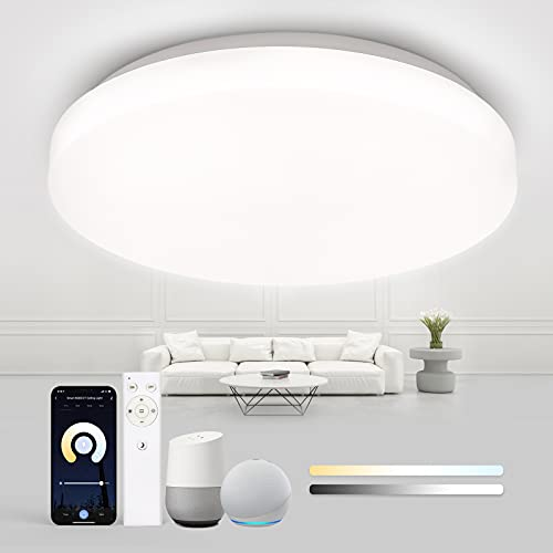 Plafon LED Techo 24W, Tasmor Smart WiFi Lámpara de Techo LED Ø40cm, Regulable 2700K-6500K y Mando a Distancia, Compatible con Alexa y Google Home, IP54 2400LM Para Baño Cocina Sala de Estar Do