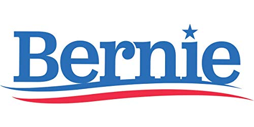 "Set of 20 Bernie Sanders 2020 Stickers 4"" x 2"