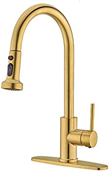 Avola Single Handle Spring High Pull Down Spray Brass Kitchen Faucet