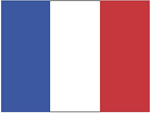 Artimagen Pegatina Bandera Rectangular Francia 80x60 mm.