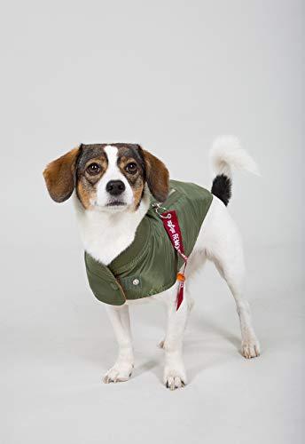 Dog MA-1 Nylon Flight Jacket