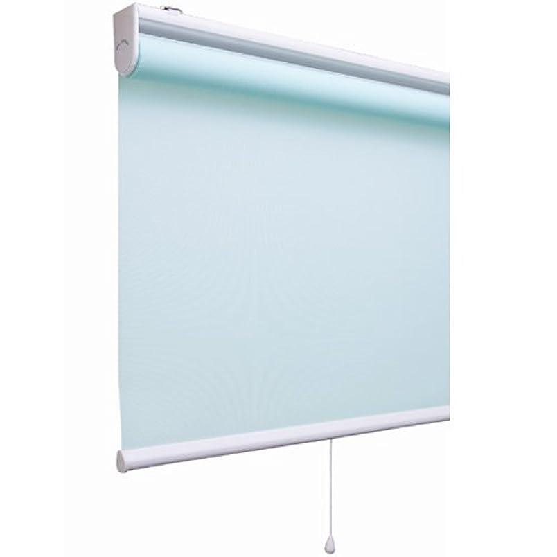 静けさ誤解を招く侵入プレーン(無地)タイプのロールスクリーン 「アルティス」(幅80cmx丈220cm)ブルー