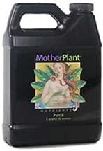 Mother Plant B Qt.