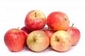 Fresh Organic Gala Apples-5lb by Tropical Importers