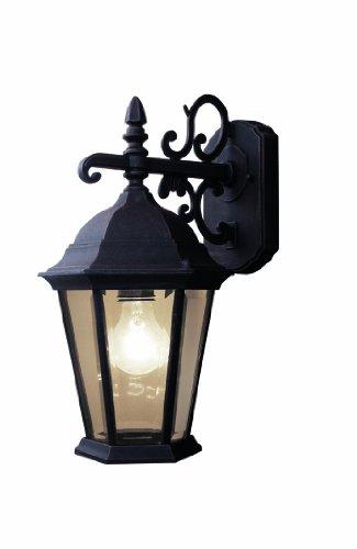 Woodbridge Lighting 61012-RTP Basic 1-Light Outdoor Wall Sconce, Powder Coat Rust