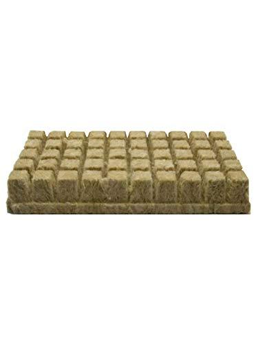 Kapokilly Grodan Rockwool, Semence De Clonage par Propagation De Blocs De Feuilles De Laine De Roche, Culture Hydroponique 25 × 25 × 40MM, 50Cubes.