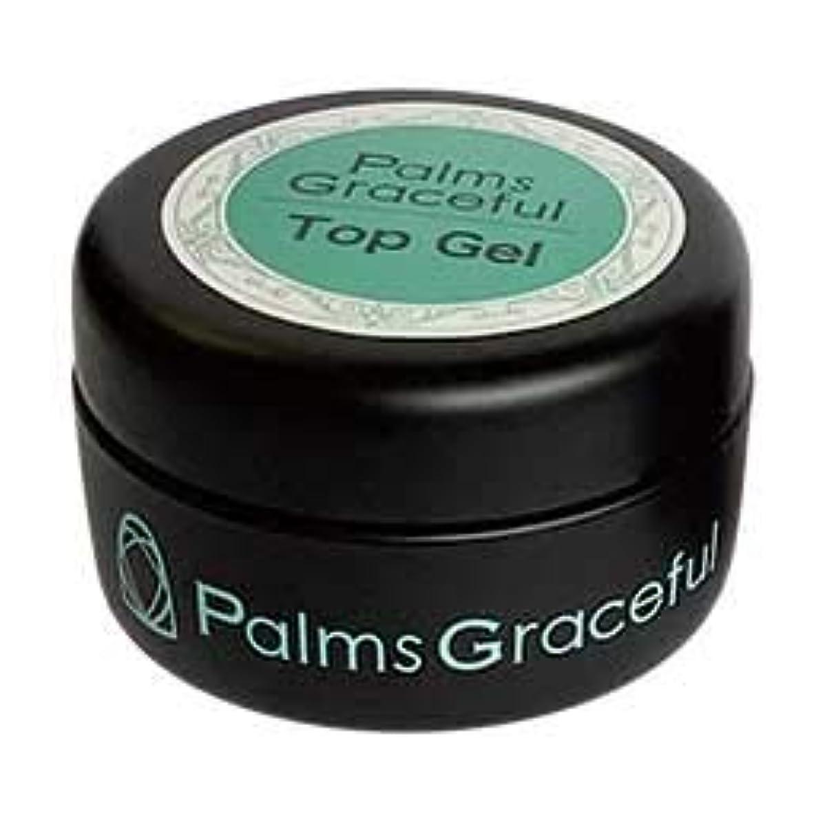 パワー広がり記事Palms Graceful トップジェル 25g