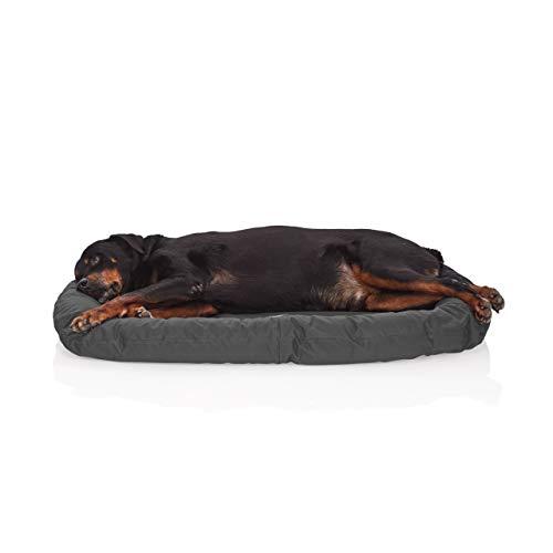 Pets&Partner® Indoor und Outdoor Matte für kleine bis große Hunde, Grau L