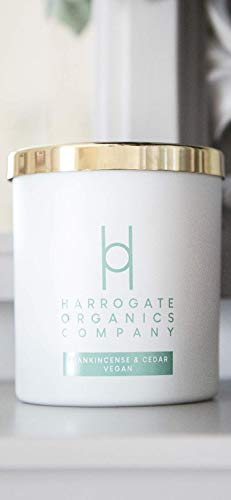Harrogate Organics Company Big Vegan Candle (Double Wick)