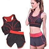 Toriox Yoga Suit, Women's 2 Piece Activewear Set, Running Suit/Slimming/Yoga Fitness/Gym Outfit/Workout Sports Wear - Fitness Training Set (Multicolour, Free Size)