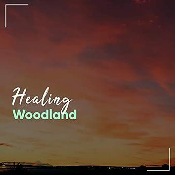 Healing Woodland, Vol. 1