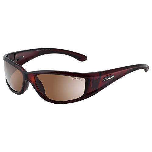 Dirty Dog Banger Dark Brown Designer lunettes de soleil Banger 52845