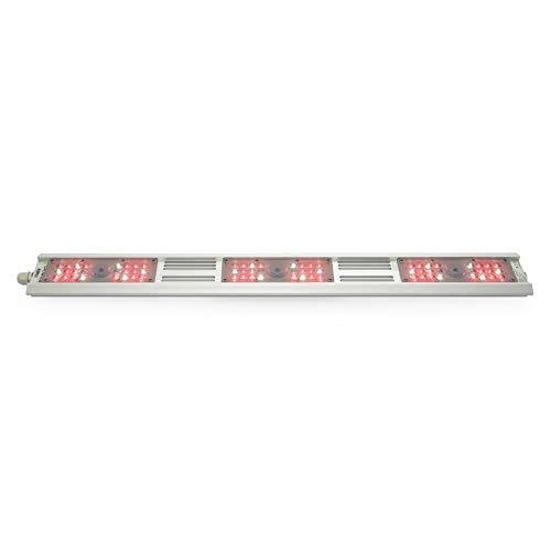 Growking® Rail 120 Watt Full Spectrum+