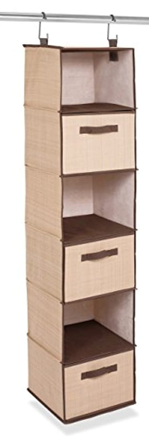 Internet's Best Hanging Closet Organizer with Drawers | 6 Shelf | 3 Drawers | Clothing Sweaters Shoes Accessories Storage | Brown (Beige)