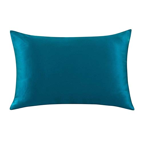 XIN NA RUI Fundas de cojín, 1 funda de almohada de seda con cremallera, de seda y morera, de muticolor, estándar, tamaño de 51 x 76 cm