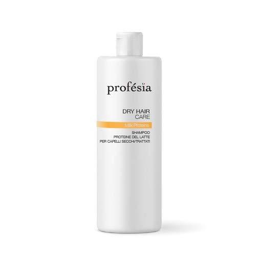 Dry Hair Care Shampoo Proteine del Latte Per Capelli Secchi Trattati (1000ml)