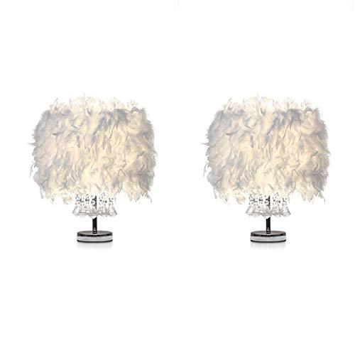 Lote de 2 luminarias de cristal con pluma de cristal, lámpara de noche, decoración de casa, color blanco E27