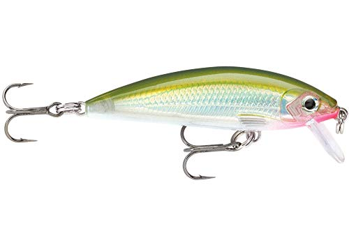 Rapala Unisex-Adult X-Rap Countdown Locken, Olivgrün, 7cm
