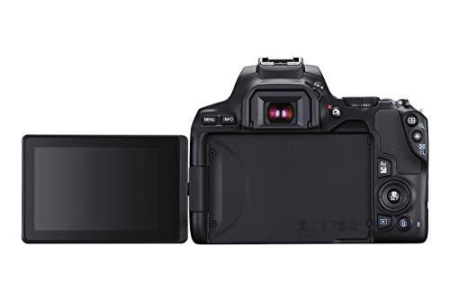 Canon EOS 250D Digitalkamera - mit Objektiv EF-S 18-55mm F4-5.6 IS STM (24, 1 Megapixel, 7, 7 cm (3 Zoll) Vari-Angle Display, APS-C-Sensor, 4K, Full-HD, DIGIC 8, WLAN, Bluetooth), schwarz