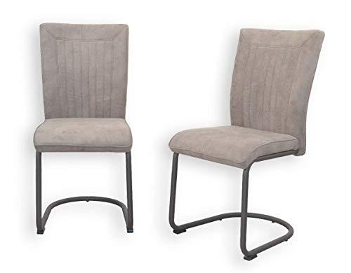 BJYX Esszimmerstuhl 2er-Set grau Freischwinger Schwingstuhl Stuhl Stühle Edel