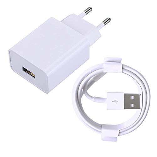 ZLONXUN Cargador 12W y Cable Compatible con Pad Air 1/2, Mini 1/2/3/4 - Tablet