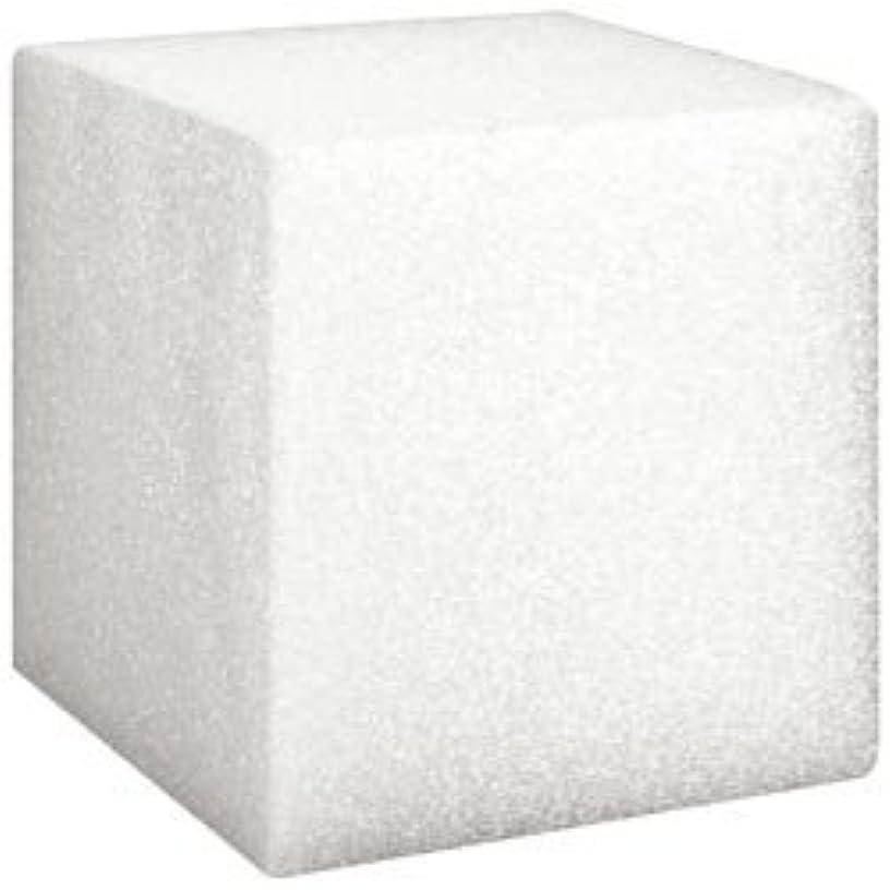 Bulk Buy: Floracraft Styrofoam Cube 3