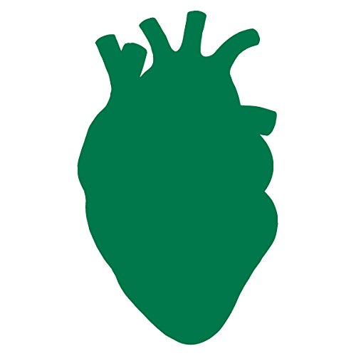 Anatomical Heart Silhouette Cardiologist Logo - Vinyl Decal for Outdoor Use on Cars, ATV, Boats, Windows and More - Green 11 inch