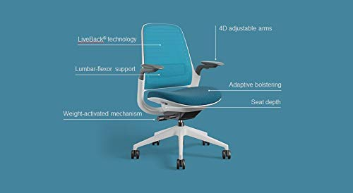 Series 1 Task Chair by Steelcase | Black Frame, Congent Connect Upholstery, 3D Microknit Back | Fully Adjustable Arms | Matching Headrest | Carpet Casters (Licorice)