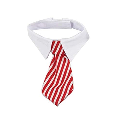 EROSPA® Hunde-Halsband Krawatte mit Kragen - Halsbinde/Schlips (Rot/Weiß)