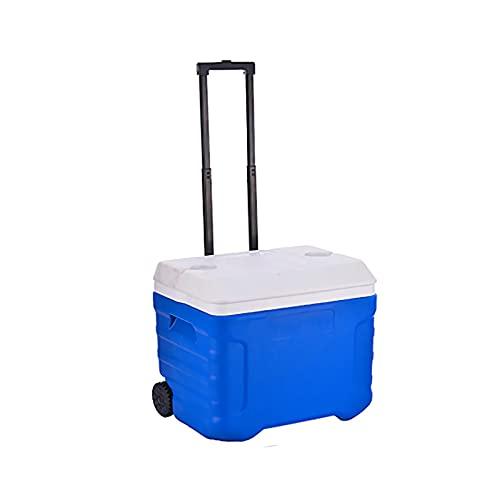 DAGCOT Refrigeradores de Caja de refrigerador aislados con Ruedas y Manejar el Cofre de Hielo de Gran Capacidad con cáscara Dura para la Playa de Camping de Viaje al Aire Libre (Size : 40L)