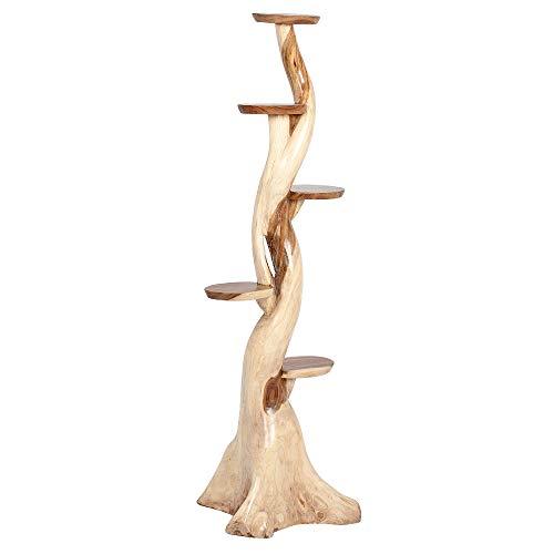 LEBENSwohnART Deko Baum Kaktus mit Ablagen ca. H200cm Suar Massivholz Regal Kratzbaum