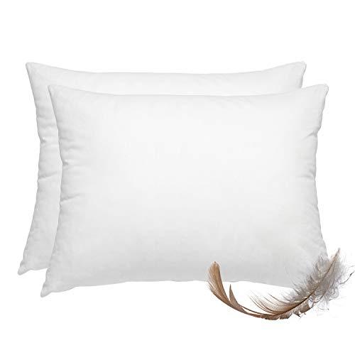 wometo 2er Set Federkissen 100% Federn 40x60 cm - 600g OekoTex Kissen Füllkissen Bezug Baumwolle weiß I Innenkissen/Kissenfüllung/kleine Kopfkissen (viele Maße) (2 Stück)