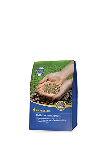 Rasensamen - Regenerations-Rasen 250 g von Kiepenkerl