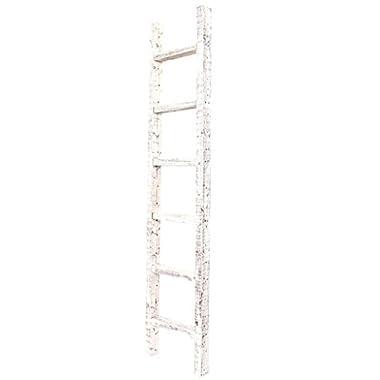 BarnwoodUSA Rustic Decorative Ladder - 100% Upcylced Wood (72  x 12  x 2.5 , White Wash)