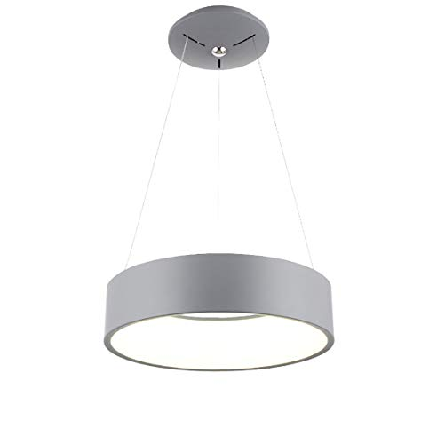 Moderno Semplice LED Durante Le Luci,Creativo Acrilico Rotondo Luce Appesa,Soggiorno Camera Sala Da Pranzo Anello Plafoniera Grigio Luce Calda (24inch)