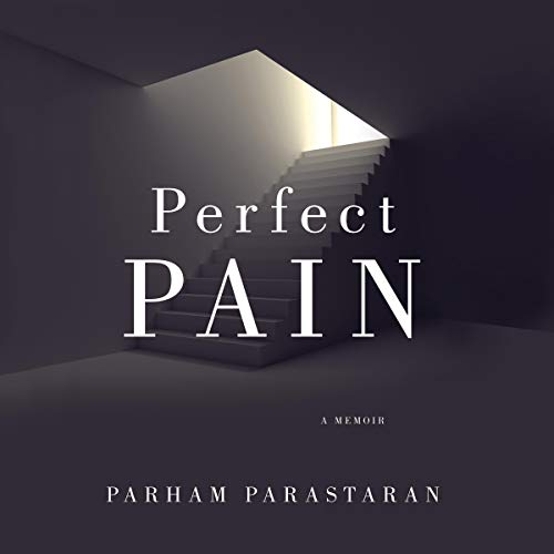 Perfect Pain audiobook cover art