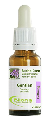 Joy Bachblüten, Essenz Nr. 12: Gentian; 20ml Stockbottle