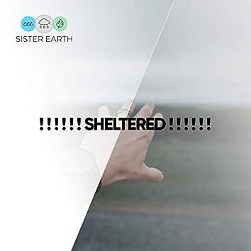! ! ! ! ! ! Sheltered ! ! ! ! ! !