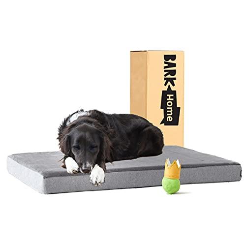 Barkbox Memory Foam Platform Dog Bed | Plush Mattress for Orthopedic Joint Relief (Large, Grey)