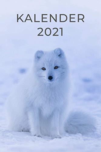 Kalender 2021 Fuchs: Taschenkalender als Wochenplaner und Tagebuch für das Jahr 2021 - Organizer für Freizeit und Beruf - Mit Ferien, Feiertagen und Jahresübersicht - Kalender Island Geschenk