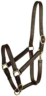 GATSBY LEATHER COMPANY 282987 Stable Halter with Snap Havanna Brown, Horse