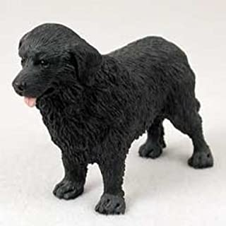 Best newfoundland dog gifts products Reviews
