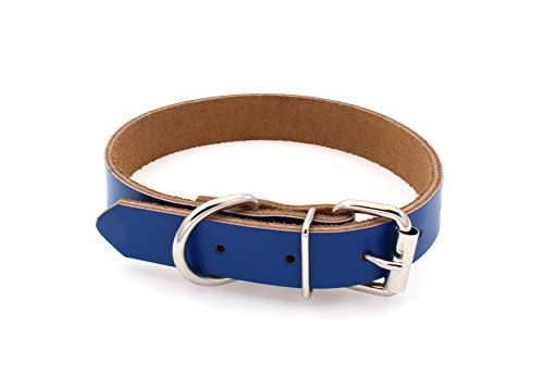 Echtleder Hundehalsband für kleine, mittelgroße, große Hunde, Welpen und Katzen (XS, Dunkelblau)