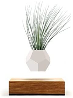 magnetic floating planter