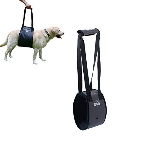Tineer Arnés para Levantar Perros para Perros de Edad Avanzada o discapacitados - Soporte Sling Ayuda Posterior Piernas débiles Levántese, camine, suba escaleras (S, Gris)